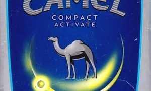 Кэмел с кнопкой