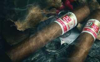 Как правильно нужно курить сигару